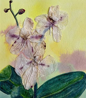 Mixed Media - Orchid by Anna Ruzsan