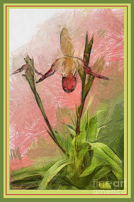 Painting - Orchid Botanical Print 1 by Earl Jackson