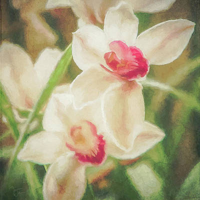 Digital Art - Orchid Garden by Teresa Wilson