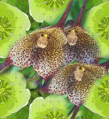 Digital Art - Orchid Monkeys by Diane Lynn Hix