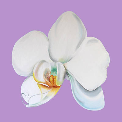 Digital Art - Orchid On Lilac by Elizabeth Lock