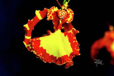 Photograph - Orchid Study Nine by Meta Gatschenberger