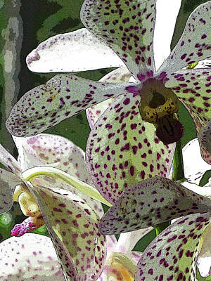 Digital Art - Orchids - Purple Polka Dots by Kerri Ligatich