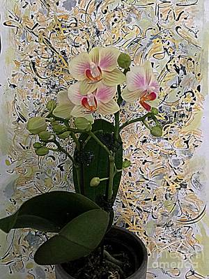 Photograph - Orchids And Art by Nancy Kane Chapman