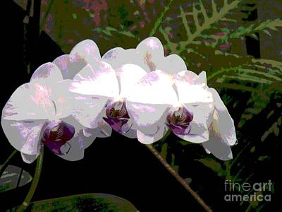 Art Print featuring the photograph Orchids Impressionistic by The Art of Alice Terrill