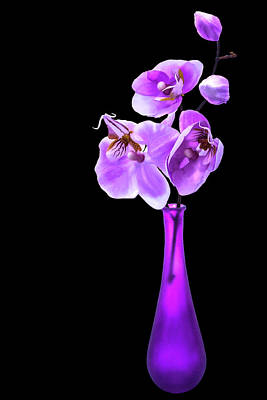 Photograph - Orchids In A Vase by Mike Stephens