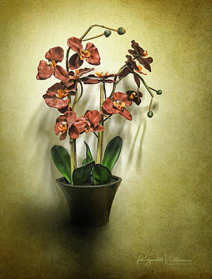 Photograph - Orchids In A Vase by Reynaldo Williams