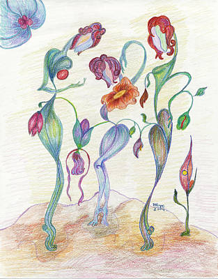 Oil Drawing - Orchids by Mila Ryk