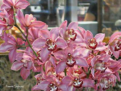Photograph - Orchids Most Gorgeous by Leanne Seymour