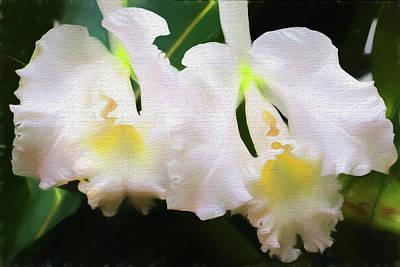 Photograph - Orchids O'keeffe by John Freidenberg