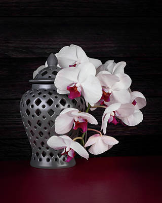 Glassware Photograph - Orchids With Gray Ginger Jar by Tom Mc Nemar