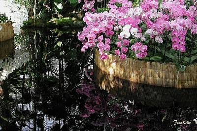 Photograph - Orchids With Reflections by Fran Kelly