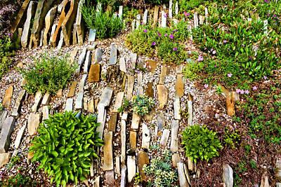 Orderly Mess - Impressions Of A Rock Garden Print by Georgia Mizuleva