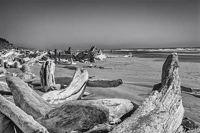Photograph - Oregon Beach Driftwood by Mark Peavy
