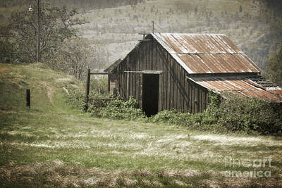 Photograph - Oregon Brown Barn Countryside by Andrea Hazel Ihlefeld