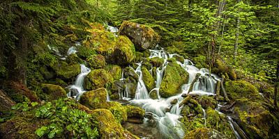 Watson Photograph - Oregon Cascades by Andrew Soundarajan