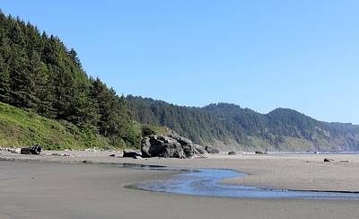 Photograph - Oregon Coast - 12 by Christy Pooschke