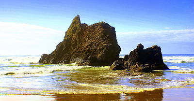 Oregon Coast 13 Art Print by Marty Koch