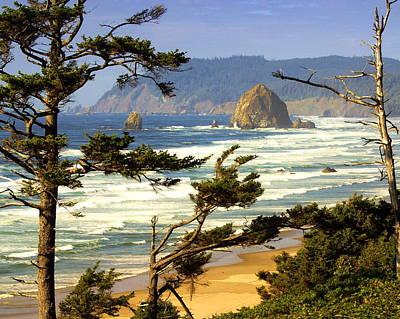 Oregon Coast 15 Print by Marty Koch