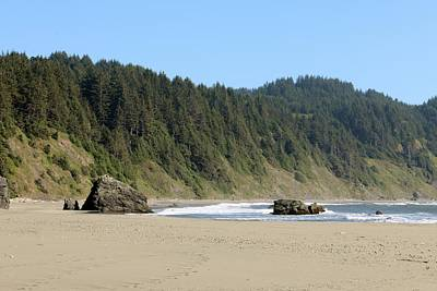 Photograph - Oregon Coast - 17 by Christy Pooschke