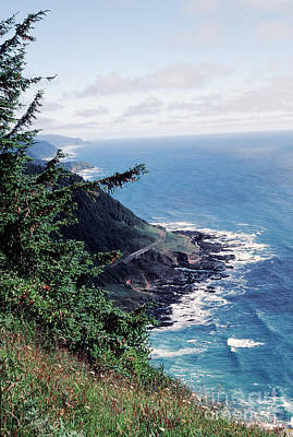 Oregon Coast 2 Art Print