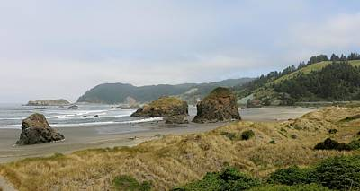 Photograph - Oregon Coast - 21 by Christy Pooschke