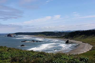 Photograph - Oregon Coast - 65 by Christy Pooschke