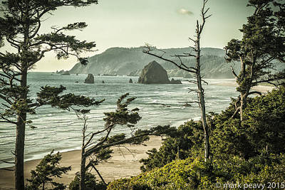 Photograph - Oregon Coast At Sunset by Mark Peavy
