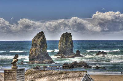 Photograph - Oregon Coast by Don Wolf