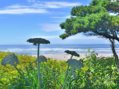 Photograph - Coastal Impressions by Third Eye Perspectives Photographic Fine Art