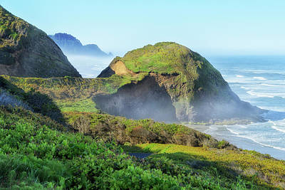 Photograph - Oregon Coast by Jon Exley