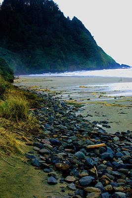 Photograph - Oregon  Coast by William Meemken
