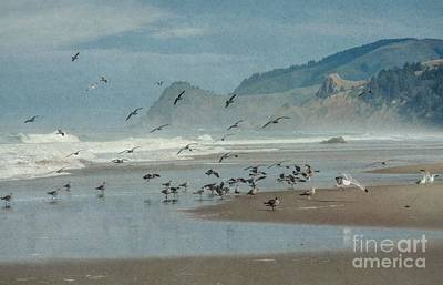 Photograph - Oregon Coast, Winter by Peggy Hughes