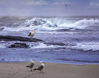 Digital Art - Oregon Coastal Morning by Diane Schuster
