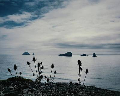 Photograph - Oregon Coastline Vista by Patricia Strand