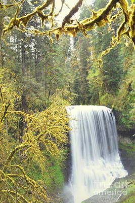 Photograph - Oregon Colorful Waterfall Forest by Andrea Hazel Ihlefeld
