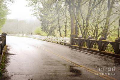 Photograph - Oregon Country Road Woodland Landscape by Andrea Hazel Ihlefeld