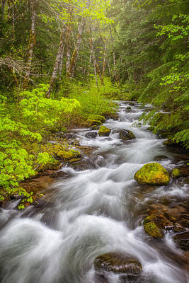 Mount Hood Photograph - Oregon Creek by Darren White