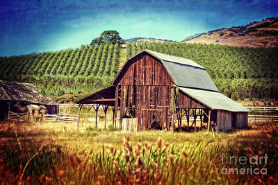 Photograph - Oregon Farm by Jim And Emily Bush