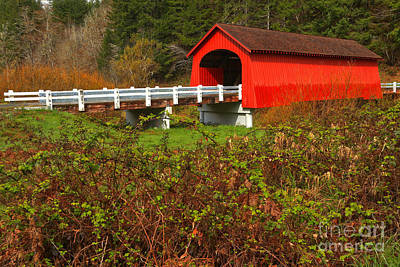Photograph - Oregon Fisher Covered Bridge by Adam Jewell