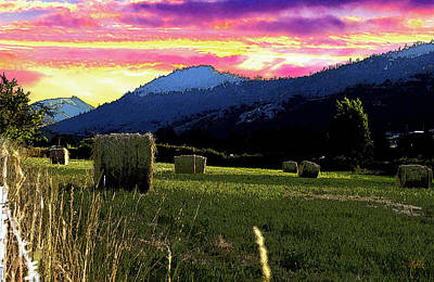 Photograph - Oregon Hay Bale Sunset by Michele Avanti