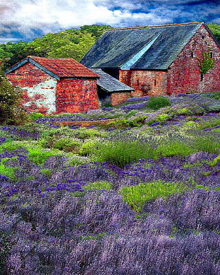 Photograph - Oregon Lavender Farm by Michele Avanti