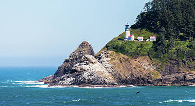 Photograph - Oregon Lighthouse by Jonny D