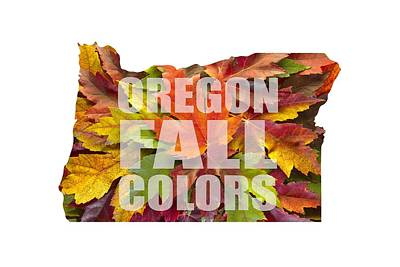 Oregon Maple Leaves Mixed Fall Colors Text Art Print