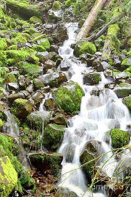Photograph - Oregon Moss Waterfall Stream Landscape by Andrea Hazel Ihlefeld