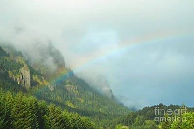 Photograph - Oregon Mountain Rainbow Forest by Andrea Hazel Ihlefeld