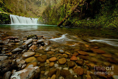 Photograph - Oregon Punchbowl Waterfall by DS Dodd