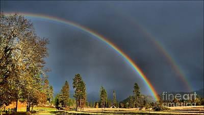 Photograph - Oregon Rain In Hdr by Julia Hassett