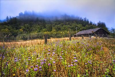 Photograph - Oregon Scenery by Debra and Dave Vanderlaan