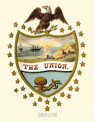 Oregon State Painting - Oregon State Arms Of The Union by Celestial Images
